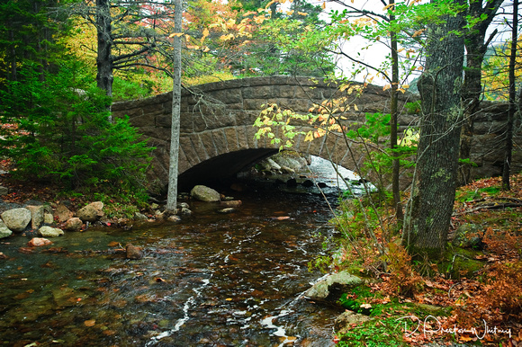 9-8653 Bridge at Bubble Pond